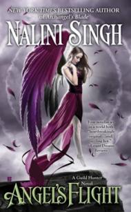 ArchangelsFlight