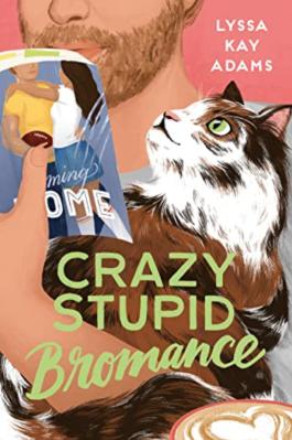 CrazyStupidBromance